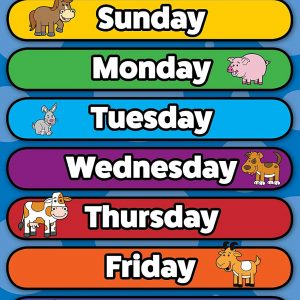 3 Pack – Days of the Week + Months of the Year + Birthday Calendar Poster Set